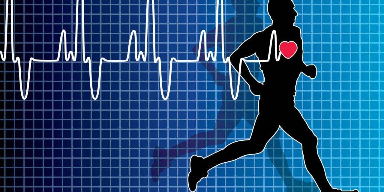 Frequência cardíaca e performance na corrida